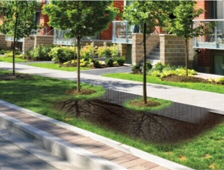 Root Barriers
